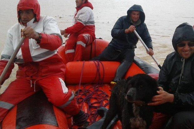 مصائب سیلاب در چهارمحال و بختیاری ادامه دارد، امداد رسانی با قایق